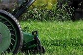 lawn clippings dpw