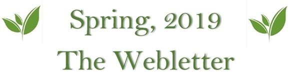 Spring 2019 the Webletter