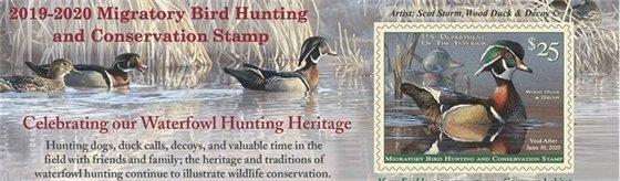 Migratory Bird Stamp