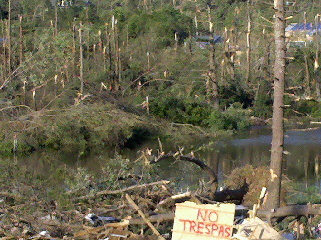 Damaged trees stand around a river, debris scattered all around